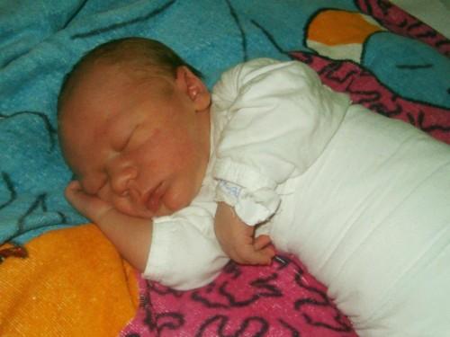 Никола у породилишту