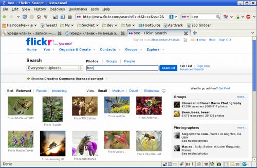 """Фотогарфије за кључну реч """"пчела"""" на Flickr-у"""