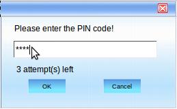Теленор Интернет контролни центар: унос ПИН-а